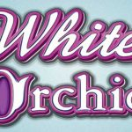 White Orchid Slot Machine – Play Slots Game GOGBETSG