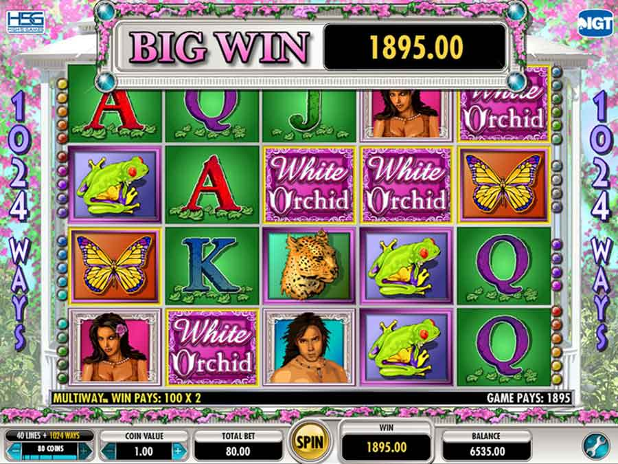 White Orchid Slot Machine - Play Slots Game GOGBETSG2