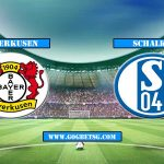 Prediction Leverkusen vs Schalke  – 11/5/2019 Football Betting Tips