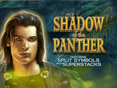 Shadow Of The Panther Slot Game
