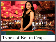 Types of Bet in Craps