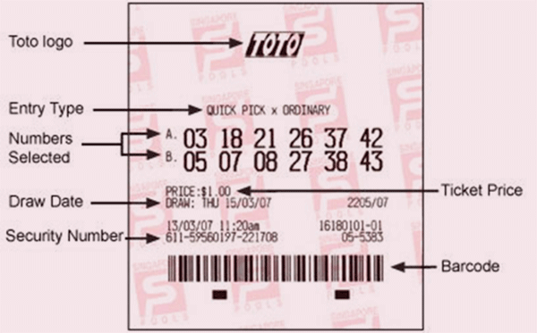 TOTO Results | How To Play TOTO | Singapore Pools