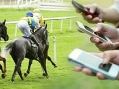 Betting calculators for horse racing horse track betting game